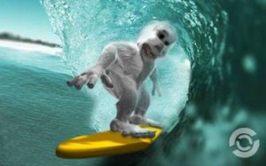 abominable surf monkey